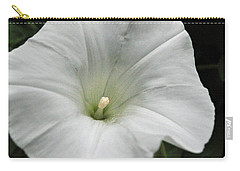 Hedge Morning Glory Carry-all Pouch by Tikvah's Hope