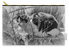 Carry-all Pouch featuring the photograph Hiding by Eunice Gibb