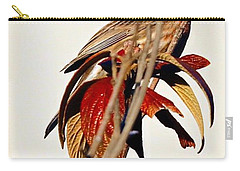 Carry-all Pouch featuring the photograph House Finch Perch by Elizabeth Winter