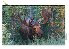 Carry-all Pouch featuring the photograph Hunting Some Munchies by Doug Lloyd