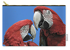 Carry-all Pouch featuring the photograph I Told You So by Rodney Campbell