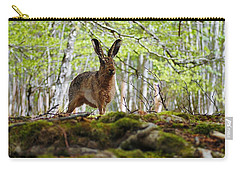 Carry-all Pouch featuring the photograph I'm All Ears by Gavin Macrae