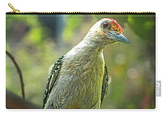 Carry-all Pouch featuring the photograph Inquisitive Woodpecker by Debbie Portwood