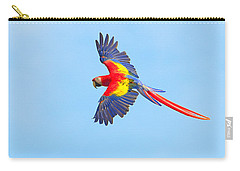 Into The Blue Carry-all Pouch by Tony Beck