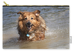 Jesse Carry-all Pouch by Jeannette Hunt