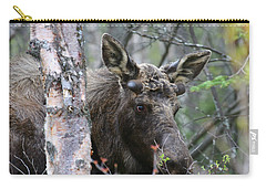 Carry-all Pouch featuring the photograph Just A Start by Doug Lloyd