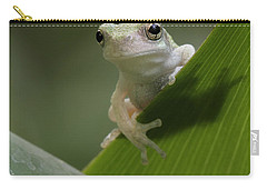 Carry-all Pouch featuring the photograph Juvenile Grey Treefrog by Daniel Reed