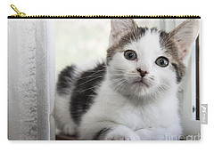 Kitten In The Window Carry-all Pouch by Jeannette Hunt