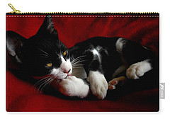 Kitten On Red Take Two Carry-all Pouch