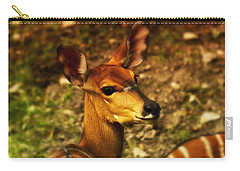 Lesser Kudu Carry-all Pouch