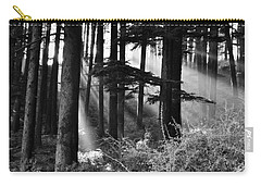 Carry-all Pouch featuring the photograph Light Through The Trees by Don Schwartz