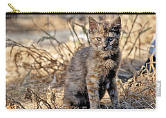Lone Feral Kitten Carry-all Pouch by Chriss Pagani