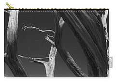 Carry-all Pouch featuring the photograph Lone Tree by David Gleeson