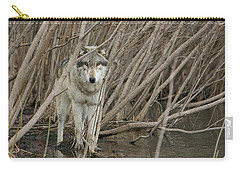 Looking Wild Carry-all Pouch
