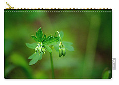 Carry-all Pouch featuring the photograph Lost But Not Forgotten by Vicki Pelham
