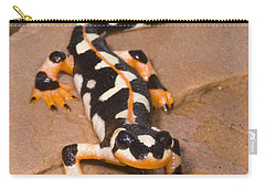 Luristan Newt Carry-all Pouch