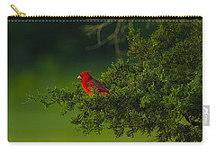 Male Cardinal In Pine Tree Carry-all Pouch