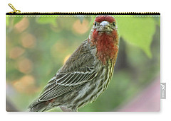 Carry-all Pouch featuring the photograph Male House Finch by Debbie Portwood