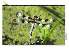 Carry-all Pouch featuring the photograph Male Twelve-spotted Dragonfly by Maciek Froncisz
