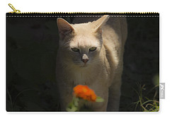 Many Moods Of Kitty Carry-all Pouch