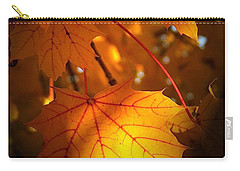 Maple At First Light Carry-all Pouch by Sue Stefanowicz