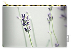 Carry-all Pouch featuring the photograph Memories Of Provence by Brooke T Ryan