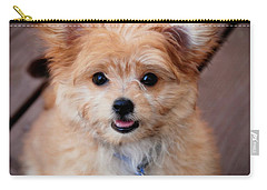 Carry-all Pouch featuring the photograph Mi-ki Puppy by Angie Tirado
