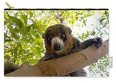 Mongoose Lemur Carry-all Pouch