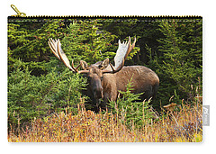 Carry-all Pouch featuring the photograph Monster In The Hemlocks by Doug Lloyd