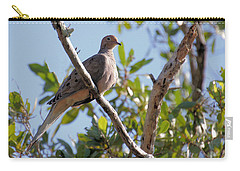 Morning Dove Carry-all Pouch by Rosalie Scanlon