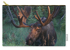 Carry-all Pouch featuring the photograph Morning Light by Doug Lloyd