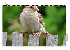 Carry-all Pouch featuring the photograph Morning Visitor by Rory Sagner