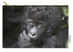 Mountain Gorilla 3 Month Old Infant Carry-all Pouch by Suzi Eszterhas