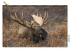 Carry-all Pouch featuring the photograph Much Needed Rest by Doug Lloyd