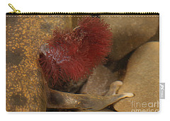 Mudpuppy Gills Carry-all Pouch by Ted Kinsman