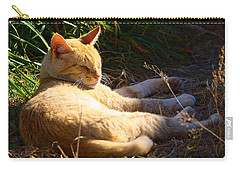 Napping Orange Cat Carry-all Pouch by Chriss Pagani