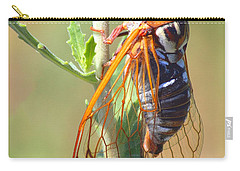 Noisy Cicada Carry-all Pouch by Shane Bechler