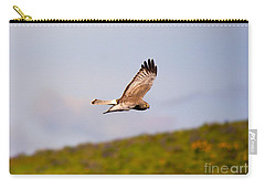 Northern Harrier Flight Carry-all Pouch by Mike  Dawson