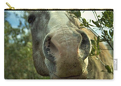 Old Gray Mare Carry-all Pouch by Patricia Greer