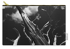 Carry-all Pouch featuring the photograph Old Tree by David Gleeson