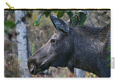 Carry-all Pouch featuring the photograph On Alert by Doug Lloyd