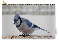 Blue Jay Carry-all Pouch by Maciek Froncisz
