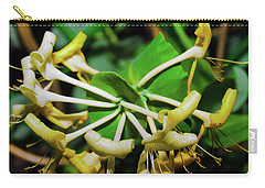 Overblown Perfoliate Carry-all Pouch