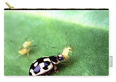 P-14 Lady Beetle Feeding On A Pea Aphid Carry-all Pouch by Science Source