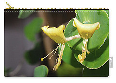 Pair Carry-all Pouch