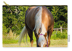Palomino Carry-all Pouch by Doug Long