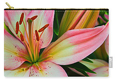 Carry-all Pouch featuring the photograph Pastel Pretty by Lynne Jenkins