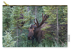 Carry-all Pouch featuring the photograph Peeking Through The Spruce by Doug Lloyd