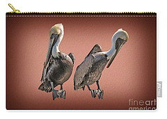 Carry-all Pouch featuring the photograph Pelicans Posing by Dan Friend