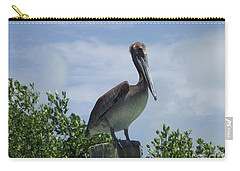 Perched Pelican Carry-all Pouch